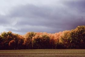 Photo Oct 03, 2 41 30 PM